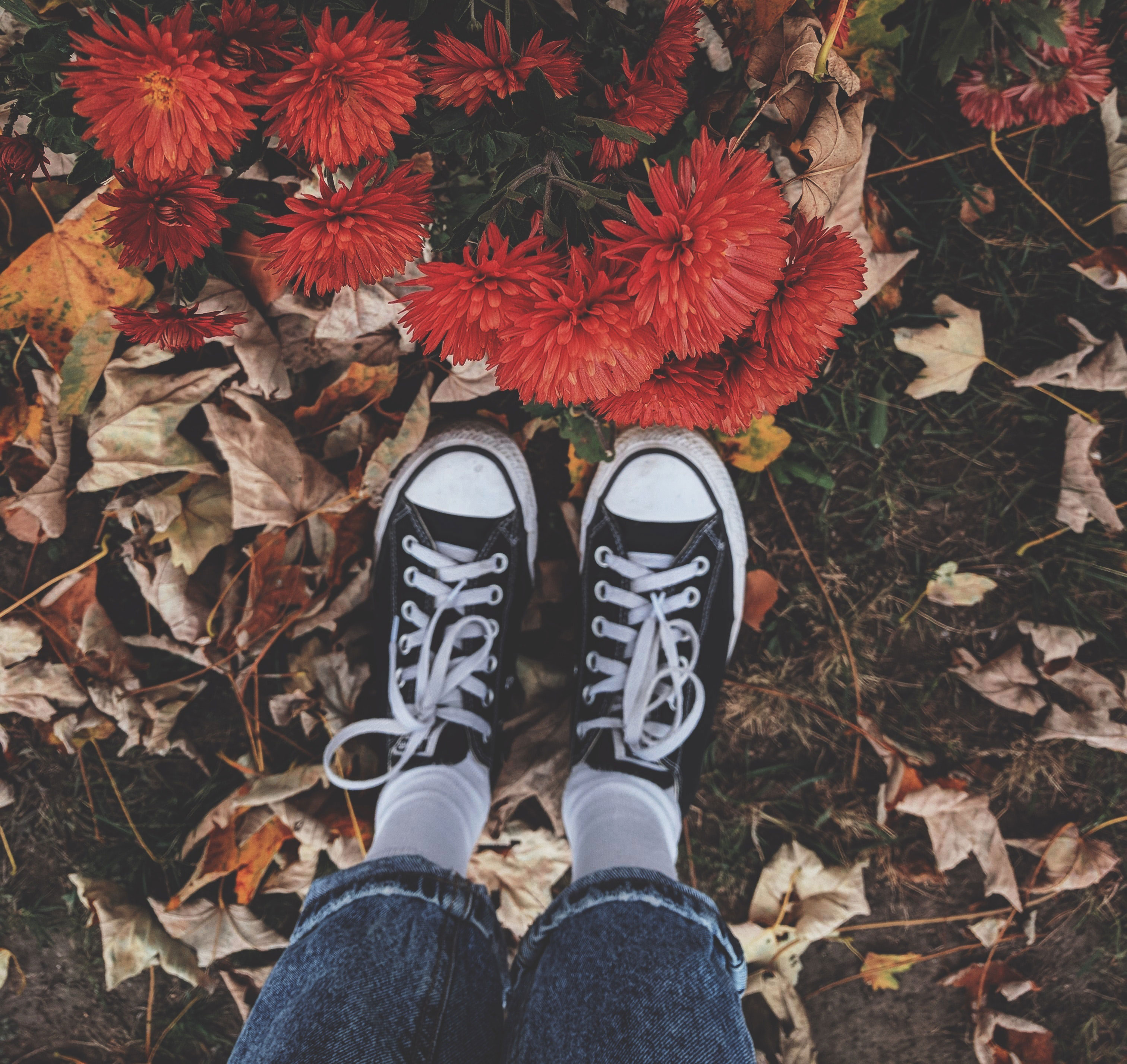 Person standing in leaves with sneakers